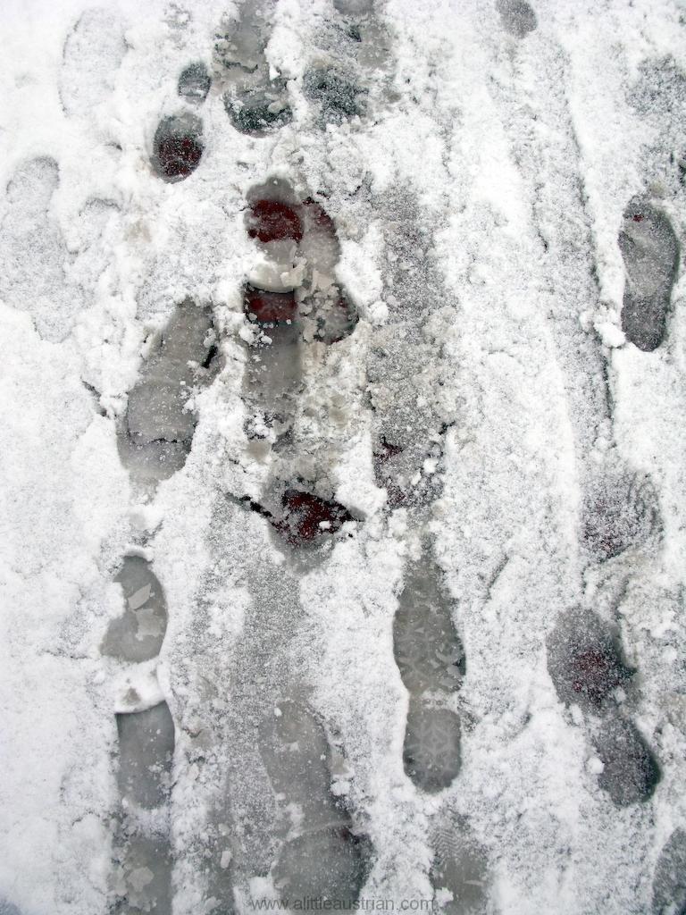 Steps_in_the_snow.jpg