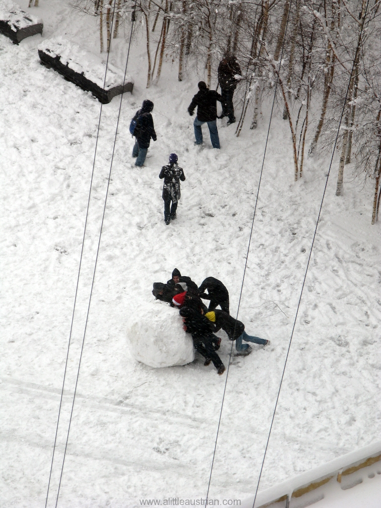 The_biggest_snowball_in_the_making.jpg