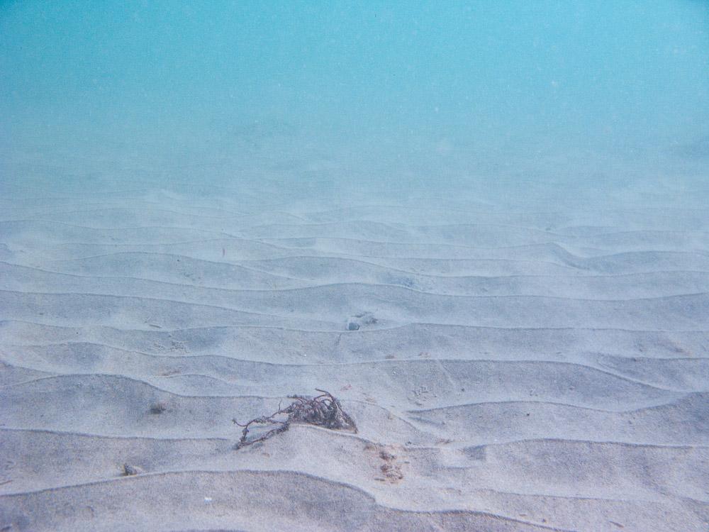 AnatolJust-Underwater Wessex-21