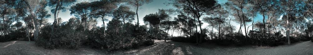 Tarragona-July-5.jpg