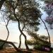 Tarragona-July-6.jpg