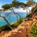 Tarragona-July-7.jpg