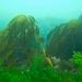 Cornwall underwater-AnatolJust-16