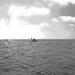 Cornwall underwater-AnatolJust-26