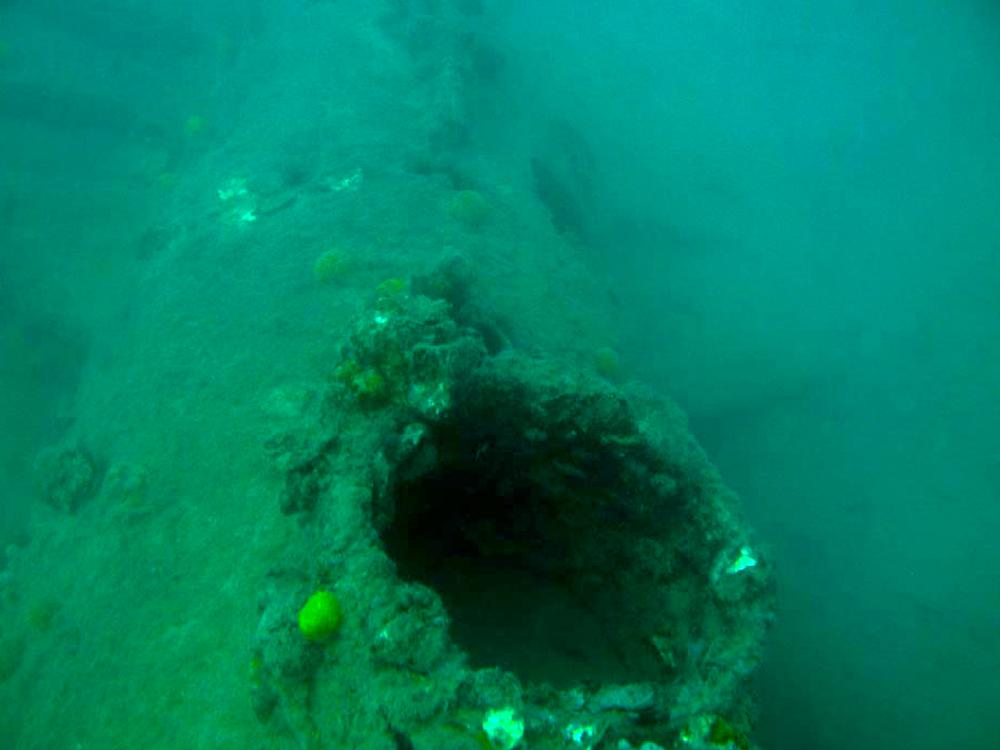 Submarine-Molch Sistiana